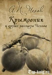 Kniga_Krizhovnik