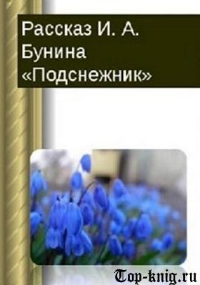 Kniga_Podsneschnik