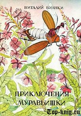 Kniga_Prikluchenija-muravishki